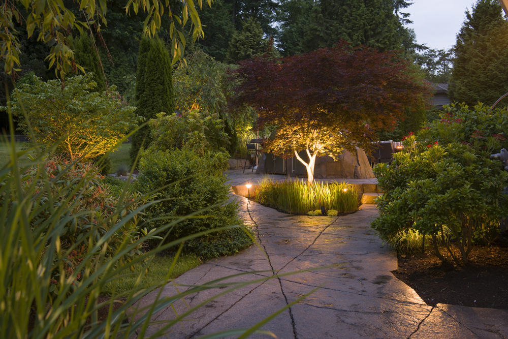 Custom concrete paving with beautifully lit planters