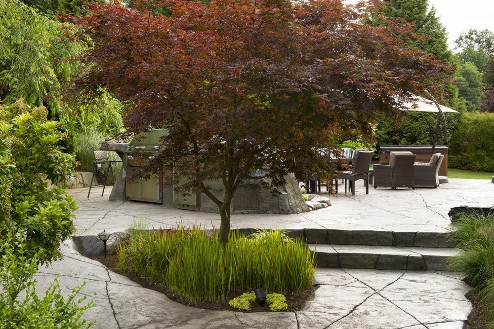 Custom designed backyard with concrete patio