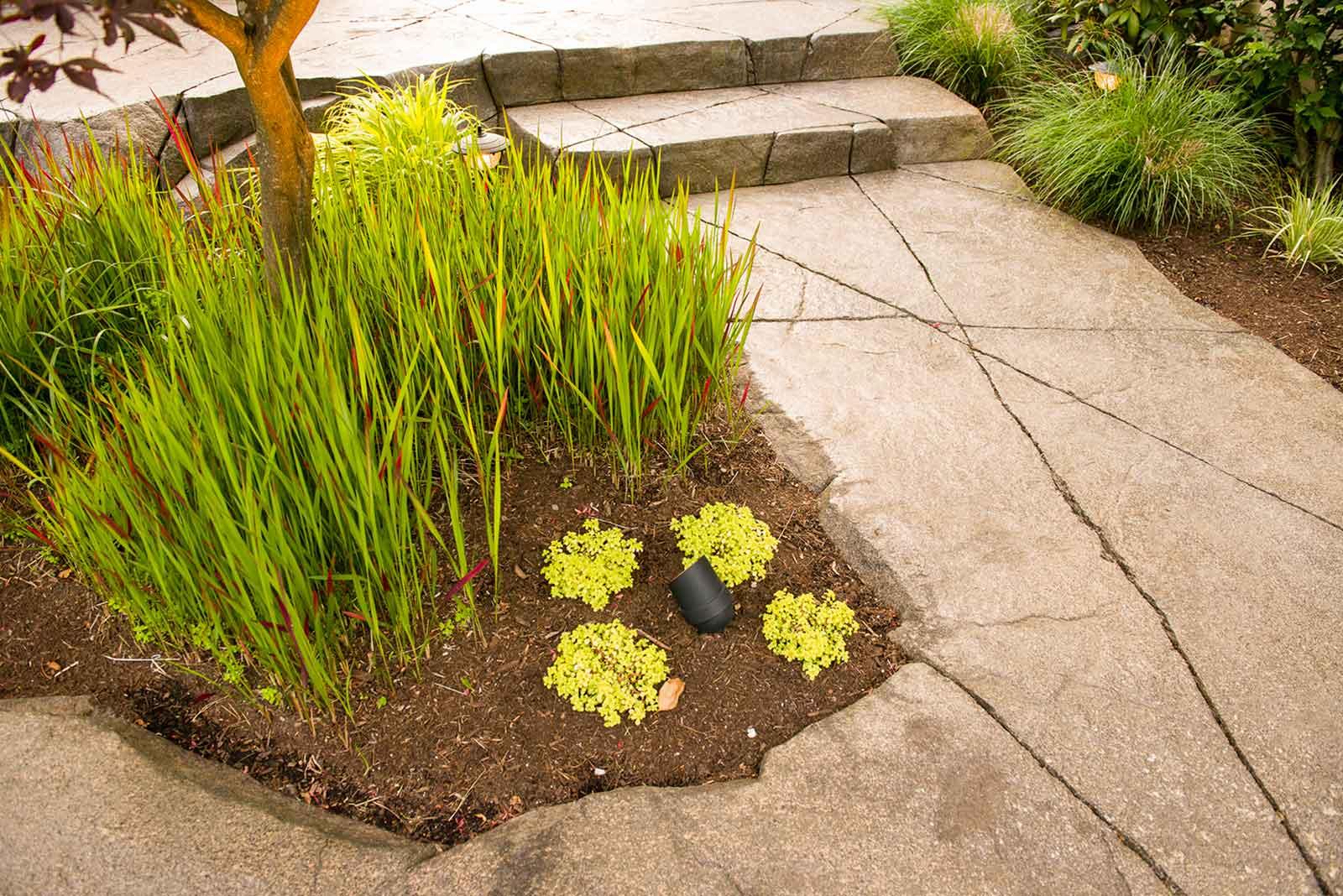 Custom concrete paved path around flower beds