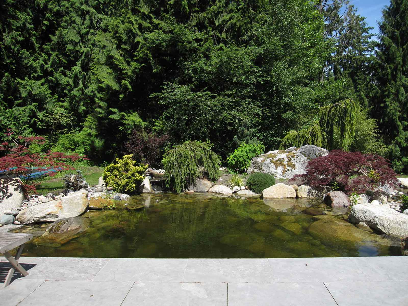 Custom design backyard feature pond