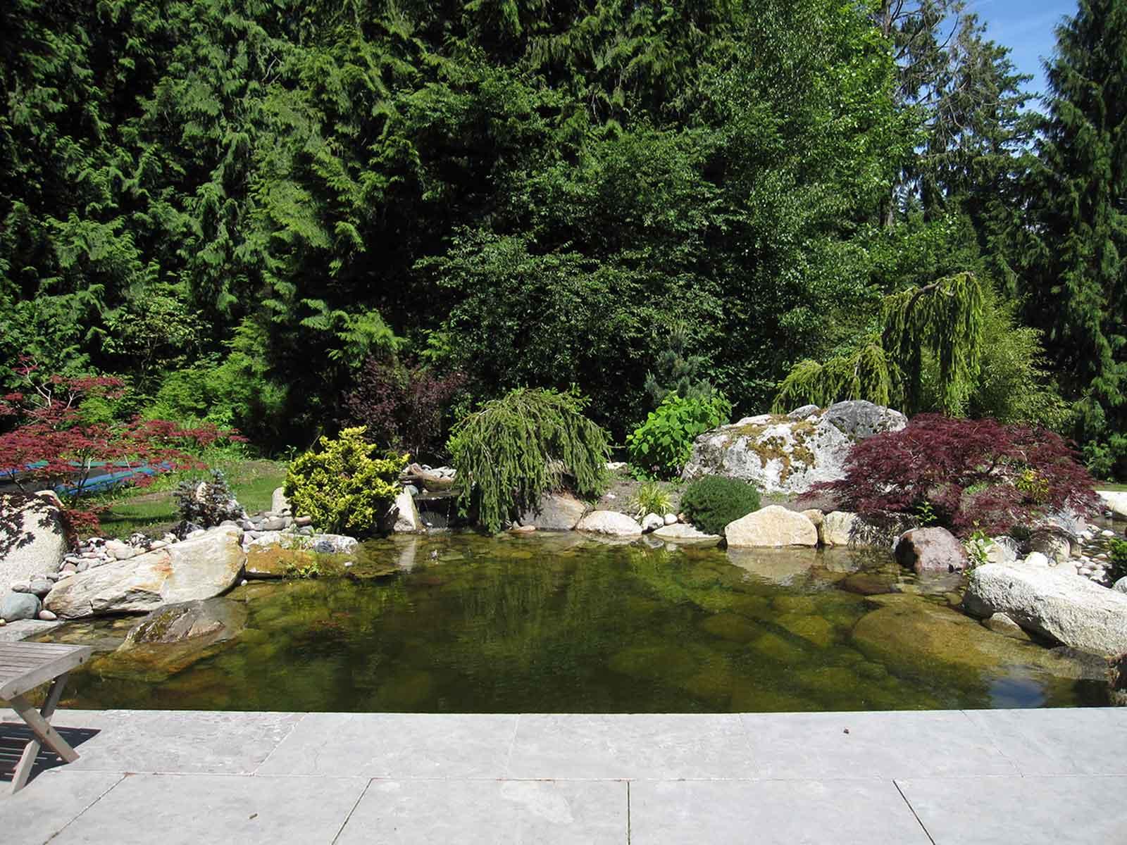 Custom design backyard feature pond